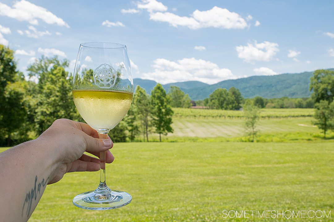 Photo of a glass of white wine at Veritas Vineyard and winery in Charlottesville, Virginia near the Blue Ridge Mountains.