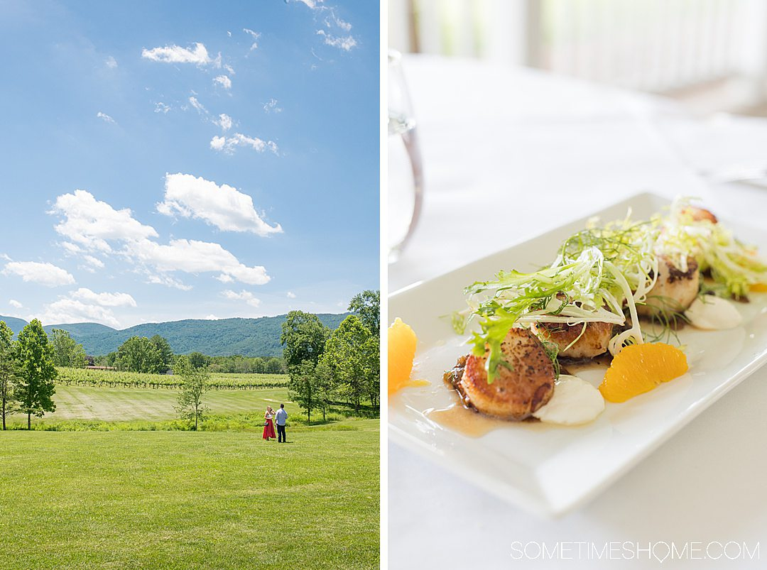 The Blue Ridge Mountain and a vineyard and scallop dish at Veritas Vineyard in Charlottesville, Virginia.