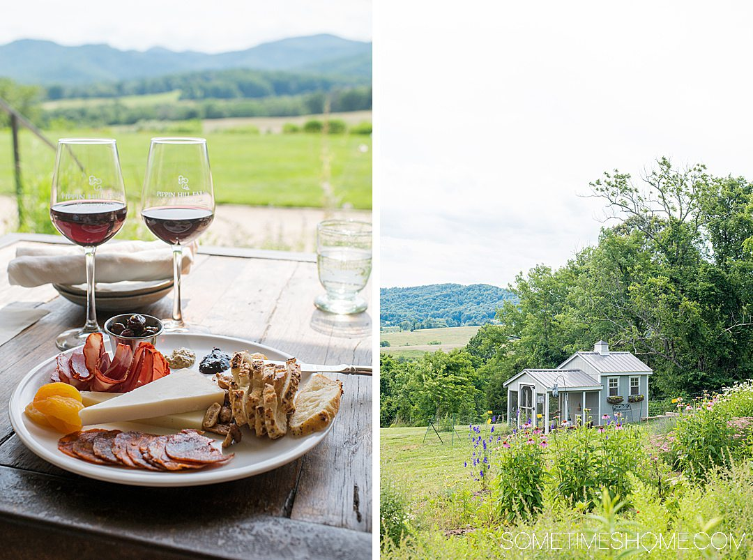 Cheese plate and view of the mountains from a vineyard in Charlottesville, Virginia.